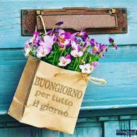 immagini buongiorno per tutto il giorno con fiori