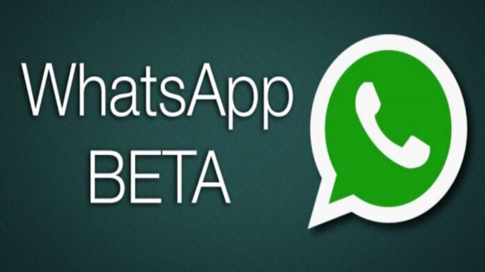 beta tester WhatsApp